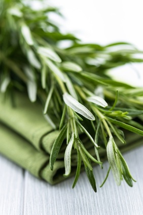 bigstock-Fresh-Rosemary-on-Tea-Towel-33024404